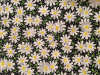 "Daisies on Black - 8"" round"